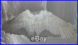 Angel wings to white large size Cosplay Stage japan import by 73916 from JP
