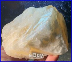 Beautiful Rare Large Angel Wing Calcite Natural Crystal Enhances Meditation