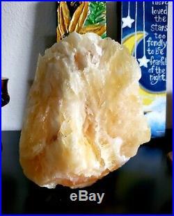 Large Angel Wing Calcite Crystal Specimen (16 lb 4 oz) Durango, Mexico